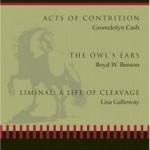 The Owl's Ears by Boyd W. Benson