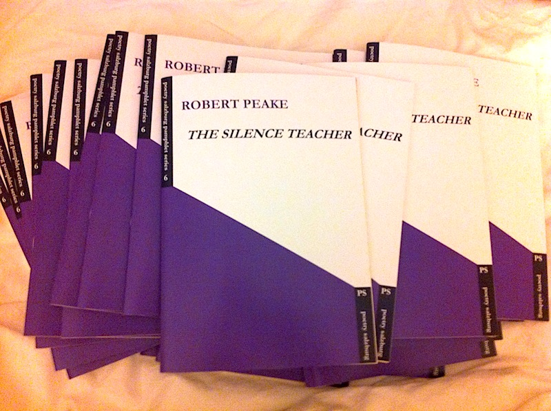 The Silence Teacher by Robert Peake