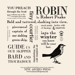 Robin Concrete Poem