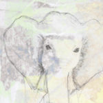 Poetry for Elephants