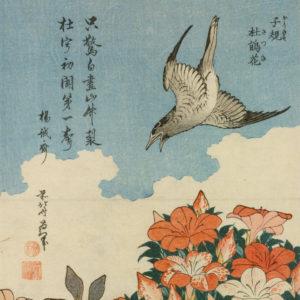 Cuckoo by Hokusai
